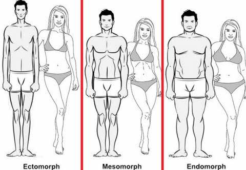 Aprende a entrenar segun la forma de tu cuerpo
