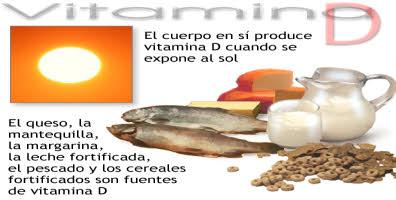 alimentos para incluir en dieta vitamina D