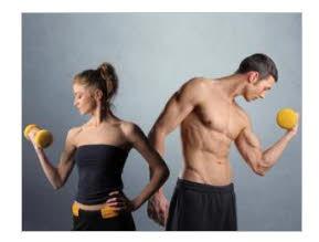 testosterona y el cuerpo