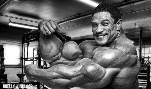 roelly-winklaar-biceps