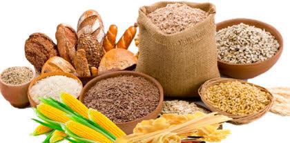 Carbohidratos la Clave de una Dieta