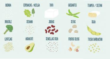 fuentes de proteina vegetal